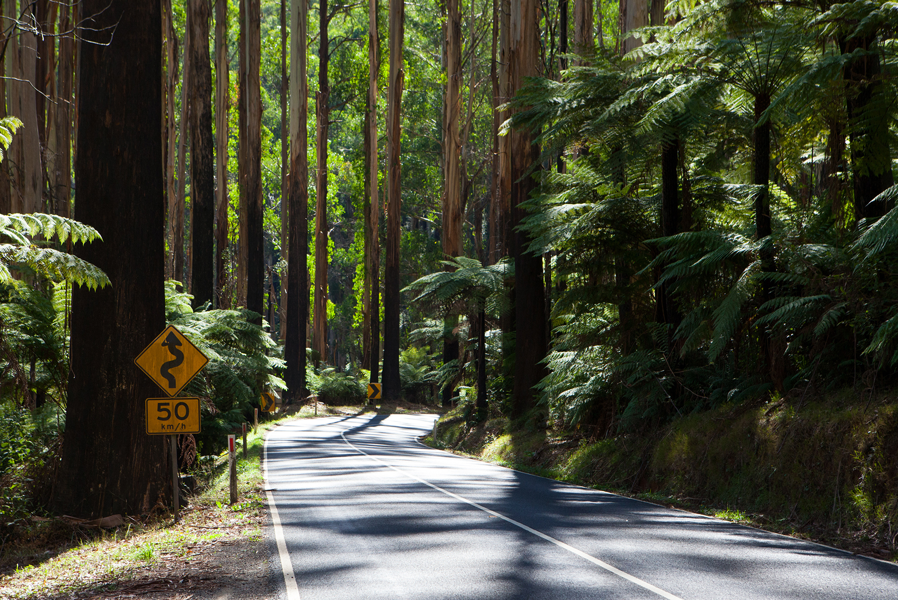 Road to Yarra Valley